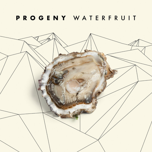 Progeny offers limited cassette tapes through Fake Four!