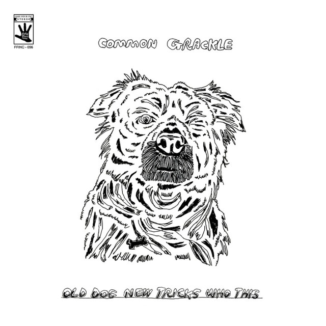 Preorder the new Common Grackle album 'Old Dog New Tricks Who This'
